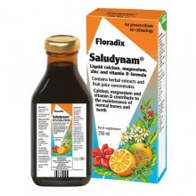 Salus Floradix Saludynam 250ml