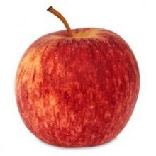 Organic Apples Gala
