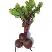 Organic Beetroot