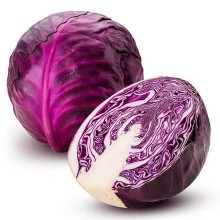 Organic Cabbage Red