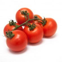 Organic Tomatoes Vine