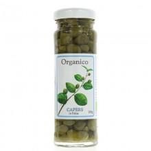 Organico Organic Capers in...
