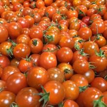 Organic Tomatoes Cherry