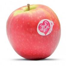 Organic Apples Pink Lady