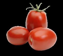 Organic Tomatoes Plum