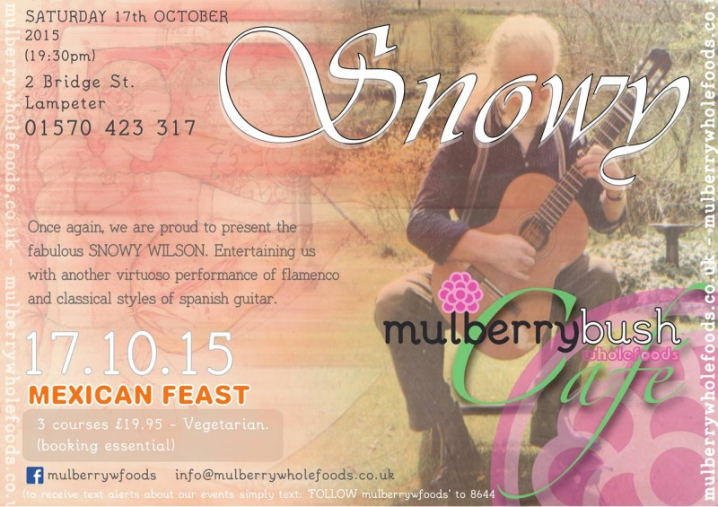 Snowy Wilson @ Mulberry Bush Wholefoods Cafe 17-10-15
